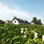 Zelenyj taryf pid klyuch Ternopil